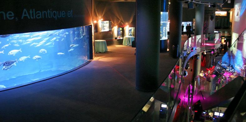 l 39 aquarium de paris salle de r ception culturelle paris be no. Black Bedroom Furniture Sets. Home Design Ideas